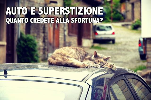 cat-1407313_640